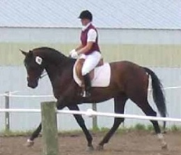 Tracy Dopko riding Aquarius